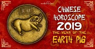 Chinese New Year Earth Pig 2